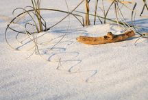 Beach & Coastal Images / Beach & Coastal images
