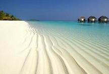 LAS MALDIVIAS