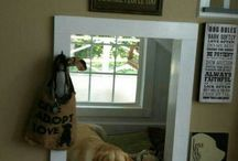 At home with pets Inspiration