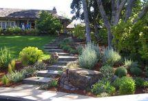 Garden steps / by Rebecca Meadley