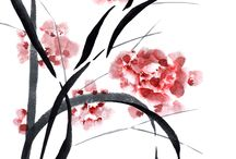 gravats japones