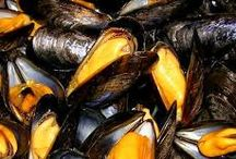 Recettes thermomix / Moules