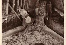 emma mijnen