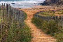 chemin dunes