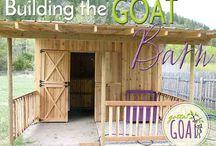 Goat Barn Design / Goat barn designs, plans, and ideas.