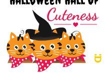 Cuteness / Cute Greeting cards