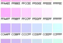 Color [컬러]
