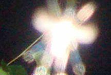 lightphenomen