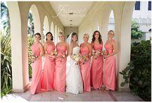 Immaculata Weddings