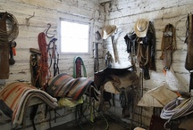 Konie i do koni