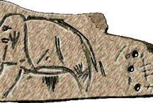Paleo Information