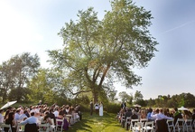 Ceremony decor / by Megan Morehouse