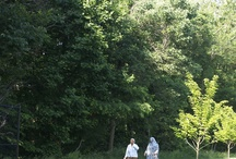 CIty of Fairfax Trails & Parks