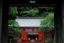 Japan / by Danielle Brown