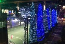 Tokyo Winter Illumination 2012 / by Naohisa Kitazato
