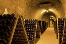 """Champagne / Les viticulteurs et les maisons de champagne vous accueillent et vous invitent à découvrir les secrets de fabrication du champagne. Poussez leur porte : ils vous parleront du vin clair, des pressoirs centenaires, de la griserie des vendanges et parfois du secrets des liqueurs. Ecoutez-les. Leur fierté n'est que respect de la nature et leur passion n'a qu'un but : vous faire partager le travail de toute une année. """"L'Abus d'alcool est dangereux pour la santé, à consommer avec modération""""."""