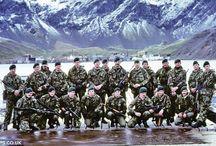 Perang Falklands