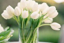 Свадьба (тюльпаны)