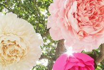 storyboard: pretty in paper  / paper flowers.  / by The Perfect Petal