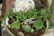 patio gardens / by Linda Zeigler