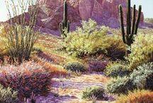 Desert design / by June Ambrose