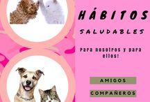 Herbaeco-Original-perrosygatos / Fotos originales de imágenes y frases con nuestros amigos de cuatro patas :)