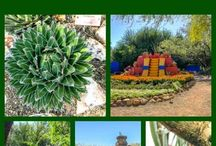 2017 Annual Conference - Tucson, AZ