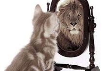 zelfbewust