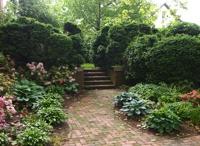 Garden areas / by Cynthia Smith