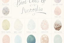 Many Many Egg / 最多只能兩顆蛋