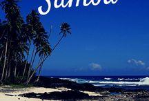 Polynesia   Travel