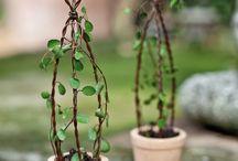 Garden Miniatures