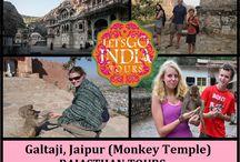 Galtaji, Jaipur (Monkey Temple) / Read blog on Galtaji, Jaipur (Monkey Temple)  http://letsgoindiatours.blogspot.in/2016/04/galtaji-jaipur-monkey-temple.html