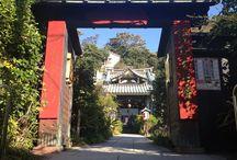 Kamakura 常栄寺(ぼたもち寺)