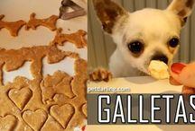 comida perros