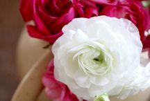 Floral Designs / by Bernie Bern Berns