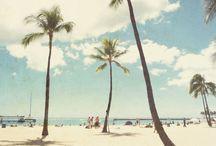 Beach & Summer / by Michelle Noschese
