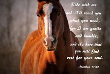 Horse riding quote