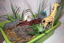 Themes & Schemes: Zoo/Jungle