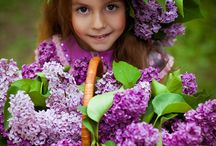 Tender Lilac