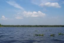 Lake County Lakes