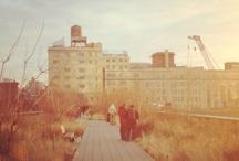 NYC HeartBeats  / by Abby Berman