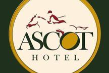 """www.ascot-hotel.eu / l nostro hotel è collocato a Caianello , in un luogo ricco di siti archeologici e di costruzioni di grande valore architettonico, nel cuore della città. """"Ascot Hotel"""" è una struttura ospitale e confortevole."""