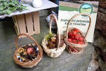 Farmářské trhy / Loni v létě se konal v Chotěboři farmářský trh zaměřený převážně na regionální potraviny. I Želmíra se zúčastnila. Posbírala v lese na lukách a v zahradě bylinky, houby a ovoce.