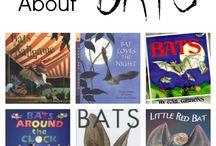 Classroom Theme: Bats/Nocturnal Animals