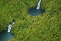Maui Babi