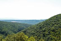 Uncovering Tuscan Nature / The wildly beautiful #Nature of #Tuscany