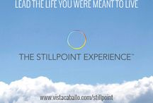 The StillPoint Experience / The StillPoint ExperienceTM is a science-based, interactive, multi-dimensional online self- discovery tool designed to inspire courage, boost creativity and eliminate fear by revealing the subconscious ways we make decisions. Sign up and start The StillPoint Experience here: my.vistacaballo.com/stillpoint