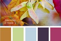 Пантон / цвета, цветы и цветосочетания...