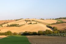 Tendi Le Marche / De regio Le Marche wordt ook wel eens het nieuwe Toscane genoemd. Deze regio wordt gekenmerkt door groene heuvels en de Adriatische kust ligt binnen handbereik. 'La Campagna' zoals men het ook noemt, is dunbevolkt. Hier vindt u de rust van het echte plattelandsleven in Italië. De streek is daarnaast zeer bekend vanwege de vele goed bewaard gebleven Middeleeuwse dorpjes en stadjes. Universiteitsstad Urbino, Jesi en Gubbio zijn hier enkele prachtige voorbeelden van.